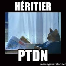 Cat Buy A Boat Meme - héritier ptdn i should buy a boat cat meme generator