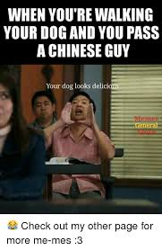 Chinese Guy Meme - when you re walking your dog and you pass a chinese guy your dog