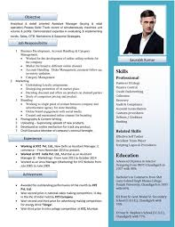 Resume Builder Online Free Download by Download Best Resume Format Visual Resume Templates Free Download
