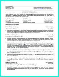 Headline Resume Examples by Pharmacist Resume Format India 13 Resume Pinterest Resume