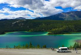 7 hour best of the yukon midnight sun excursions