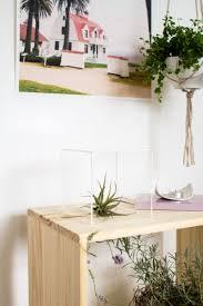 100 indoor plants arrangement ideas browsing interiors