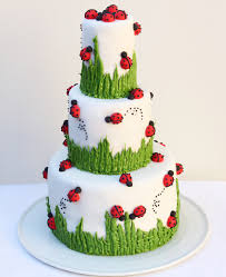 ladybug birthday cake ladybug cakes ladybug cake cora s bday some variation of this