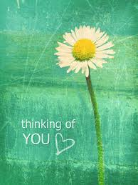 thinking of you flowers pictures images graphics comments