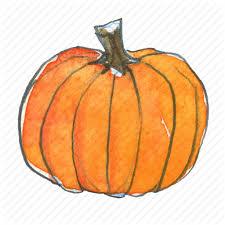 autumn fall harvest pumpkin squash thanksgiving