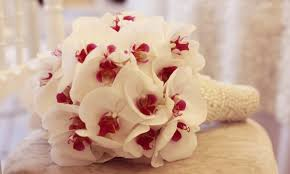 orchid bouquet creating a beautiful orchid bouquet smart tips