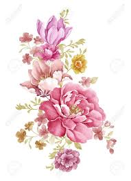Flower Image Best 25 Flower Illustrations Ideas On Pinterest Flower Sketches