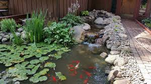 Aquascapes Of Ct Pond Builder Maintenance Repairs In Middlebury Northern Indiana