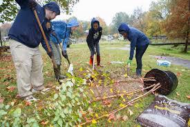 tanger family bicentennial garden neighborwoods community tree plantings