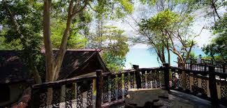 paradise pearl bungalows phi phi island official website