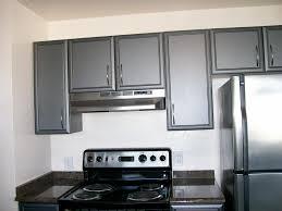 black small kitchen cabinet ideas pleasant home design