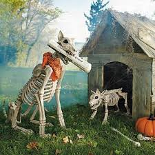 outdoor decorations skeleton dogs and haunted house