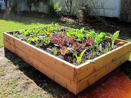 extremely creative how to make a raised vegetable garden