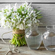 Home Decor Stores Omaha by Best Home Decor Store Home Decor Store Seattle Pleasant Design