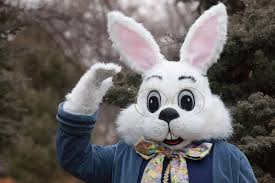bunny easter real easter bunny sightings happy easter 2017