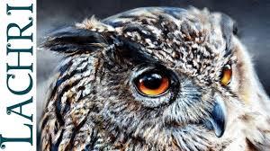 time lapse eagle owl oil over acrylic photorealistic