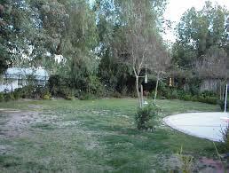 backyard and yard design for village страница 138