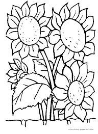 flower garden coloring pages robin flower garden coloring