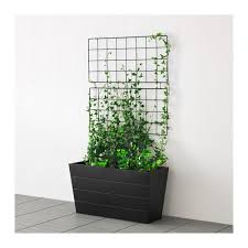 Living Trellis Barsö Trellis Ikea 10 Wonder If I Could Use These In My