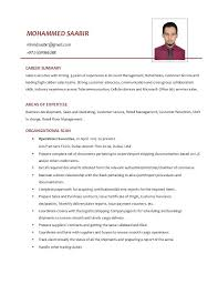 resume format for customer service executive roles dubai islamic bank retail sales executive resume fields related to customer service