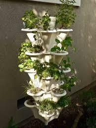 Countertop Herb Garden by Indoor Herb Garden Indoor Plants Expert