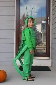 Halloween Bug Costumes Stink Bug Costume Halloween