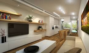 Shotgun House Design Narrow Homes Designs Home Design Ideas