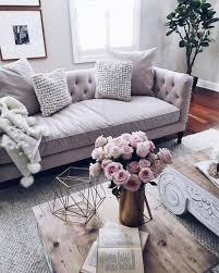 Home Decor Plants Living Room by Home Accessory Sofa Home Decor Furniture Home