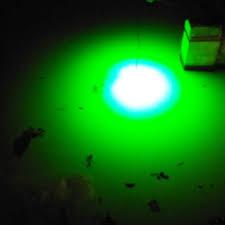 12 volt led fishing lights green light squid fishing deanlevin info