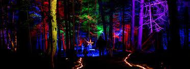 lights fest promo code night lights music festival