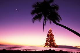 quotes about christmas and coffee hawaiian christmas and new year u0027s words and phrases