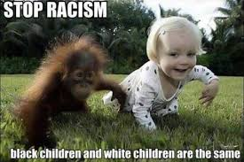 Funny Nigger Meme - funny racist memes racist pictures