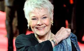 how to get judi dench hairstyle reductress 7 times dame judi dench was so perfect it made you go