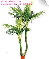 q082403 types of ornamental plants artificial areca palm tree