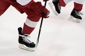 Floor Hockey Unit Plan by Warrior Ice Arena Boston Landing