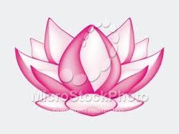 nice lotus flower sketch hawaii dermatology ink pinterest