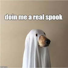 Doge Meme Font - ghost doge memes imgflip
