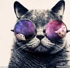 Morpheus Cat Meme - what if i told you im morpheus s cat by recyclebin meme center