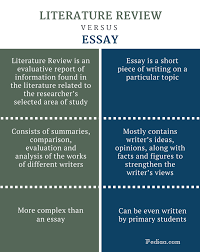 sample literature essay essay in literature sample literary essays sample literature essay difference between literature review and essay infographic png essays on my experience in college