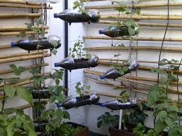 Vertical Vegetable Garden Design How To Start Vegetable Gardening In A Small Area