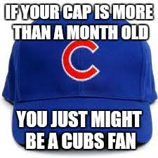 Chicago Cubs Memes - image tagged in funny funny memes memes sports chicago cubs losers