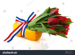 dutch tulips wooden clogs flag ribbon stock photo 45145012