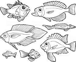 fish line art stock vector art 165609007 istock