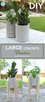 Low Bowl Planters by Best 25 Large Concrete Planters Ideas On Pinterest Concrete