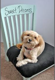 upcycled diy pet bed from an old chair hometalk