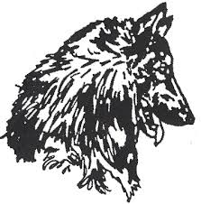 belgian sheepdog art belgian sheepdog page