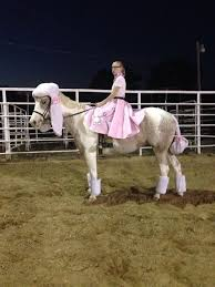 50s Halloween Costumes Poodle Skirts 25 Horse Halloween Costumes Ideas Horse