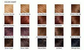 what color is sable hair color brown hair color chart medium hair styles ideas 9484