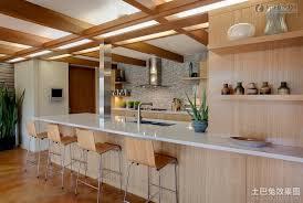 american kitchen design shonila com cool american kitchen design interior design ideas fancy in american kitchen design design ideas