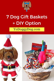 Food Gifts For Christmas The 25 Best Dog Gift Baskets Ideas On Pinterest Dog Grooming